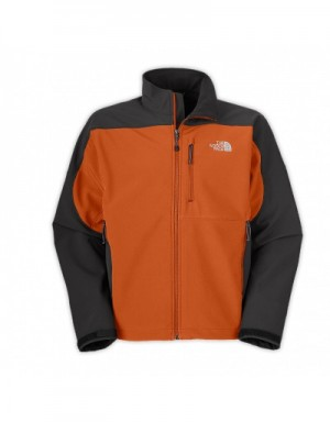 The North Face Long Sleeved In 388690 For Men