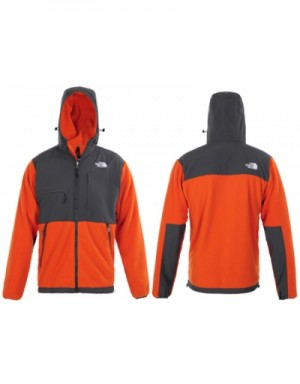 The North Face Down Jackets Long Sleeved In 388695 For Men