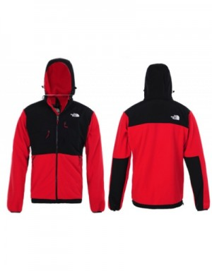 The North Face Down Jackets Long Sleeved In 388696 For Men