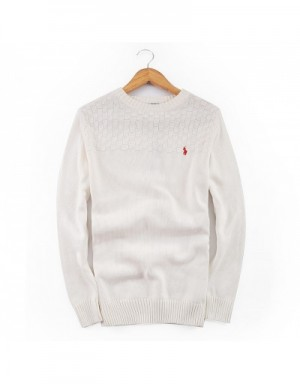Ralph Lauren Polo Sweaters For Men #635396
