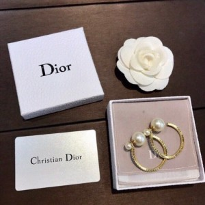 Christian Dior Earrings #770707